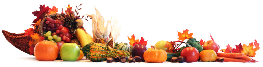 Thanksgiving or fall harvest banner