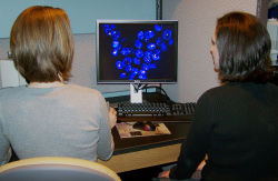 students working in cytogenetics lab