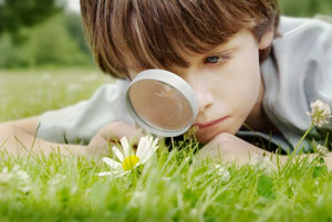 Boy with magnifying glass looking at a flower
