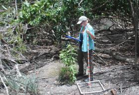 Sam DiGiulio recording vegetation data