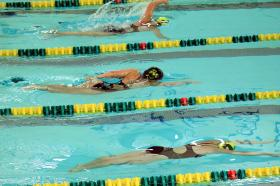 Swimmers racing freestyle at Green and Gold.