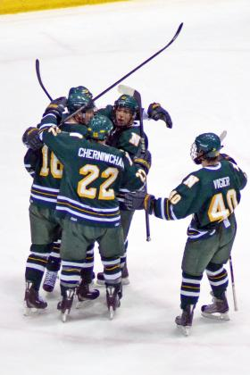 Wildcats celebrate a goal last weekend.