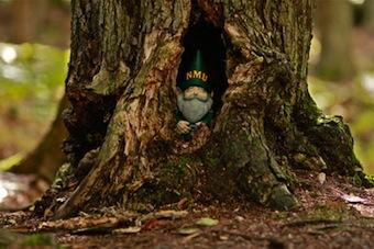 Norman the Garden Gnome