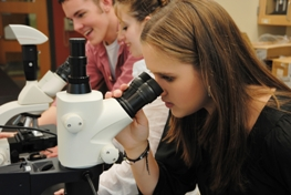 students using microscopes