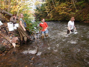 NMU students in a stream