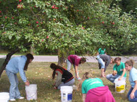 Students cleaning a yard