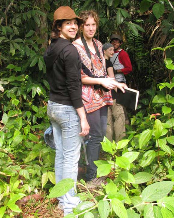 Students on Amazon jungle trail
