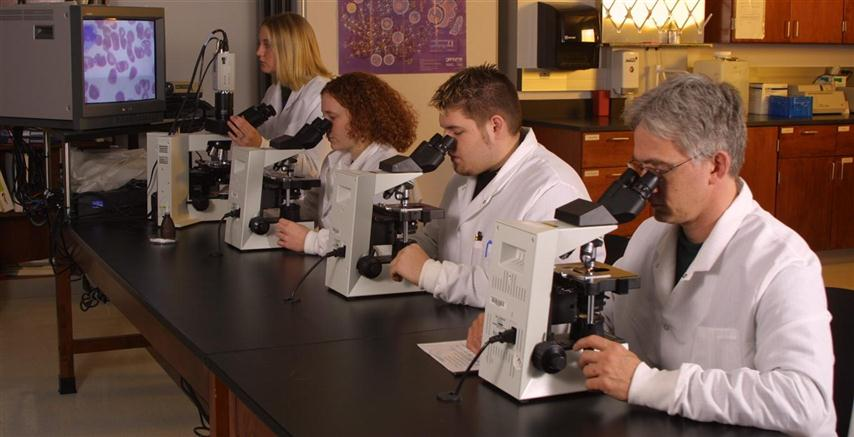 Students using various microscopes